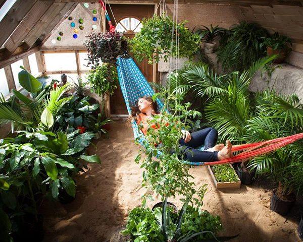 intérieur serre du futur greenhouse