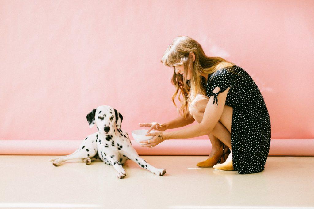 nourrir son chien en mode zéro déchet